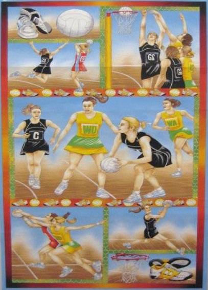 Netball Panel Sport - Click Image to Close