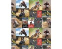 Burrangong Creek Dirt Bike Co: Block Collage Allover Bikes