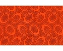 Kaffe Fassett - dot - Orange