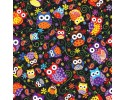 Multi Coloured Owls on Black