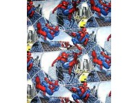 Spiderman City Block Web