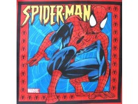 Spiderman Pillow / Cushion Panel - Ready to Jump