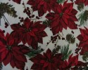 Christmas - Red Poinsettiers With Pine Cones on White Background