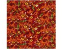 Flowers Giraween on Orange Red Background Australian