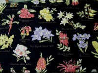 Australian Flora Flowers With Names on Navy / Black