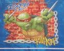 TMNT Ninja Turtles square pillow cushion Panel Ralph Raphael