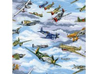 Warplanes planes warbirds