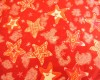 Christmas - Red & White Stars on a Red Background