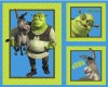 Large Shrek Fabric Panel with 2 pillow / cushion panels