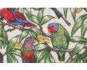 Birds in Paradise Cream